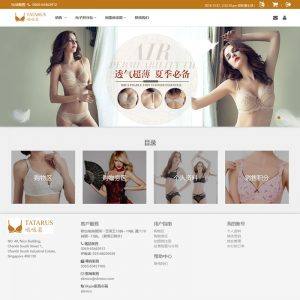 Tatarus - A Bra Theme, Web Template, Teclutions